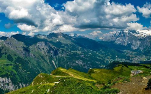 mountains grass nice kind freedom
